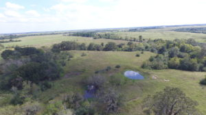 SOLD-101 Acres Cat Spring, Austin County