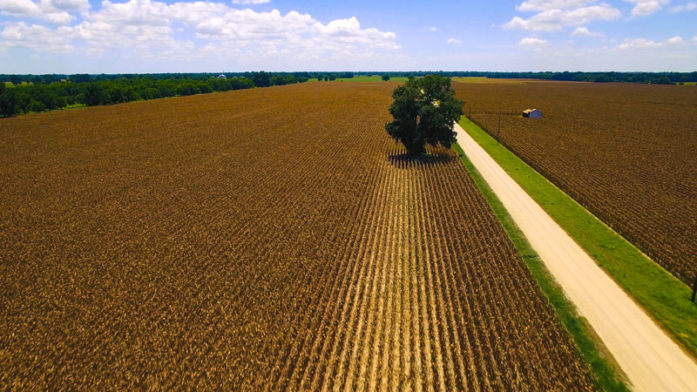 SOLD-78 Row Crop Acres – Wharton County, TX