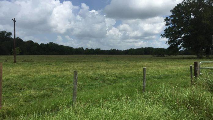 SOLD – 15 acres Van Vleck, TX