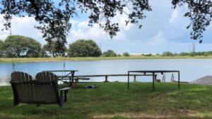 Cattle & Duck hunting property in Wharton County, TX