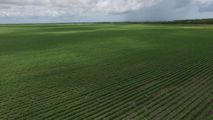 223 Acres-Hwy 35 W, Bay City, TX