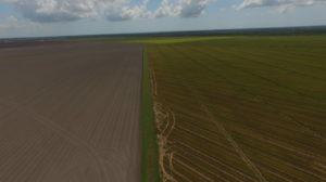 1,500 Acre Irrigated Rice/Row Crop Farm – Danbury, Texas