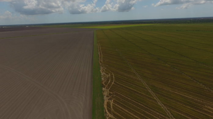 1,500 Acre Irrigated Rice/Row Crop Farm - Danbury, Texas