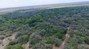 346 Acre Hunting Ranch-Jackson County, TX