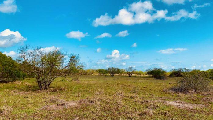 889 Acre – Arenosa Creek Ranch – Jackson County