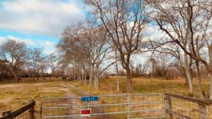 122.95 Acre Investment/Development Property